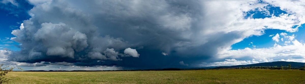 Boksgala 'Storm Friederike' versus 'GrandeDame'