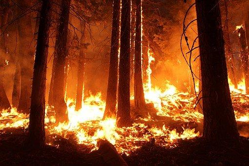 Australië brandt